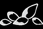 Icona_Processo_06_Rev01_2020-01-02